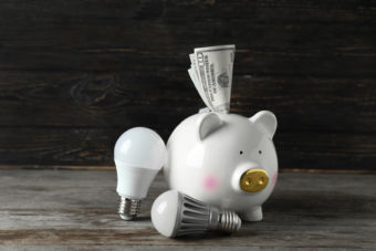 Piggy bank with money and light bulbs on wooden background