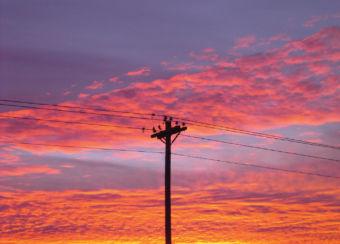 birds on a power line against a sunset sky