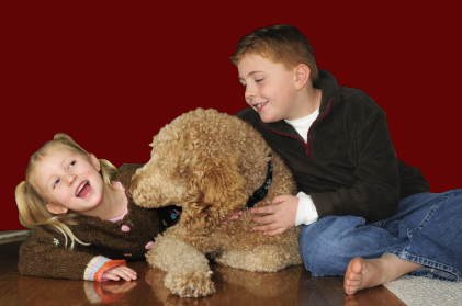 A young girl and boy sit on either side of a fuzzy golden haired dog